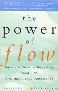 The Power of Flow book